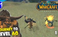 Hunting The Wildlife In The Barrens – WoW Classic Journey To Level 60 Episode 12