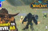 Exploring Ashenvale – WoW Classic Journey To Level 60 Episode 19